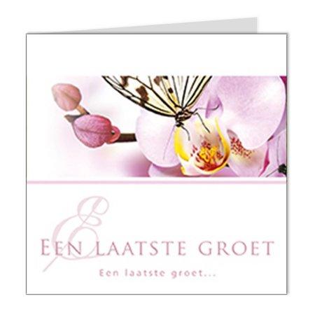 Emotions Emotions Quatro - roze orchidee - Een laatste groet