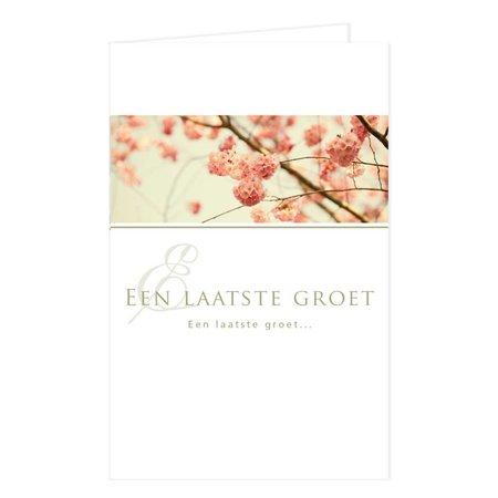 Emotions Emotions groot formaat - Cherry blossom - Een laatste groet