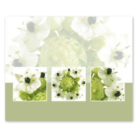 Romance Bloemen- & Kadokaartjes Romance - Groen knopje