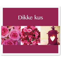 Favourite Dikke kus