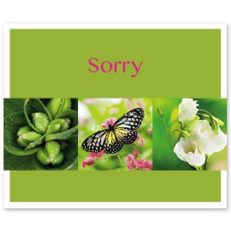 Favourite Bloemen- & Kadokaartjes - Favourite - Sorry