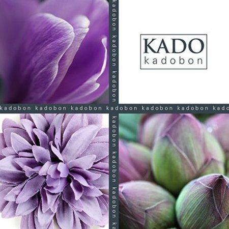 Present Present Kadobonnen - Purple four