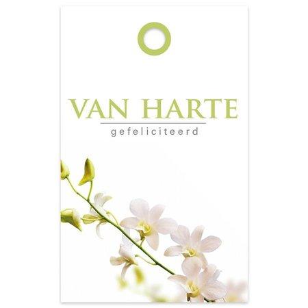 """Basic"" Fleur Kadokaartjes 'Basic' Fleur - Van harte"