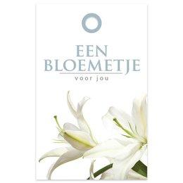 """""""Basic"""" Fleur Een bloemetje"""