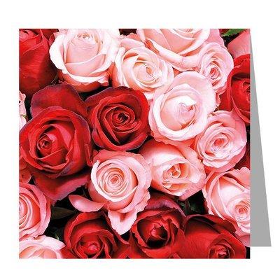 Gelegenheden Red and white roses