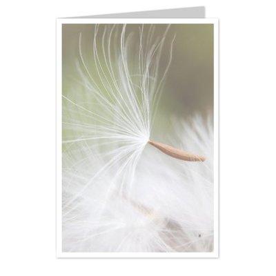 wenskaarten Blanco