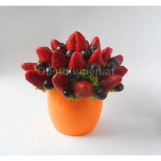Tulpenaugen