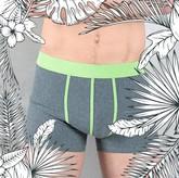 CALICO Boxershorts dunkelgrau / grün