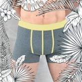 CALICO Boxershorts dunkelgrau/gelb