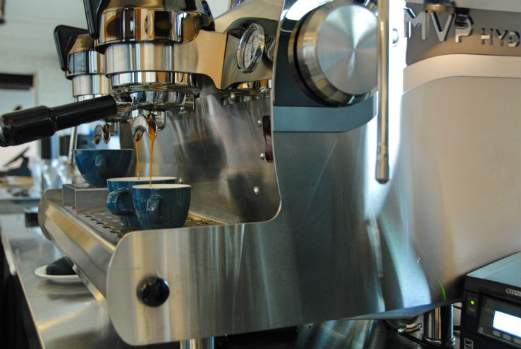 Blommers Bar Synesso MVP Hydra