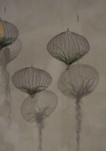 Air Planting, Special Black Edition, design Carolijn Slottje