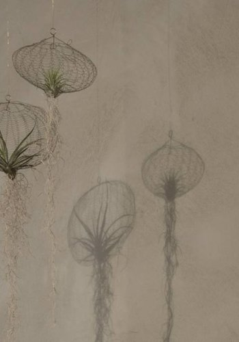 Air Planting, messing, design Carolijn Slottje