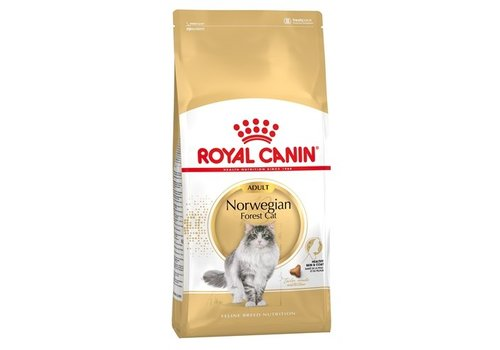 Royal canin Royal canin norwegian forest cat