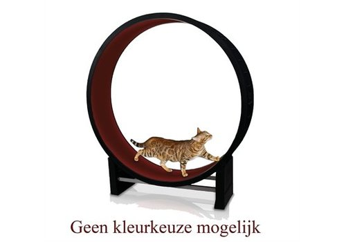 Merkloos Cat in motion looprad voor katten assorti