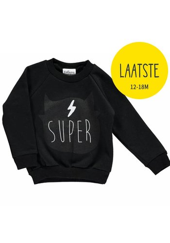 Lichte Sweater The Super Pets