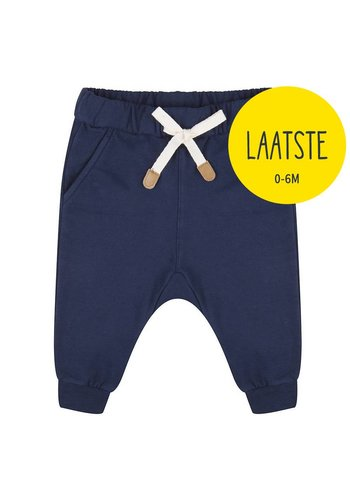 Basic Pants Blauw