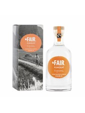Fair. Kumquat Liqueur