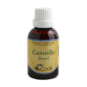 Cook Kaneel extract 50ml - BIO