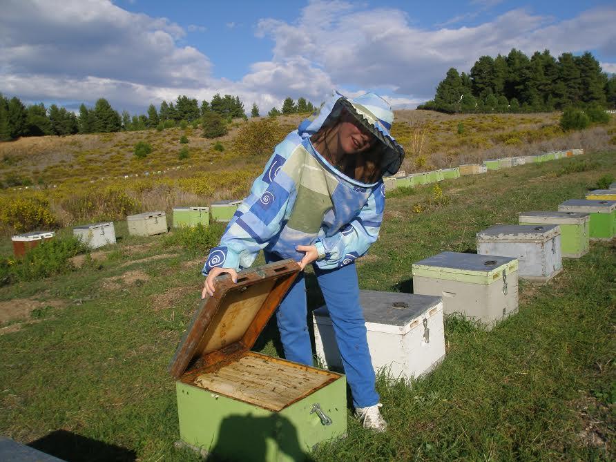 imker collecteert pure rauwe honing