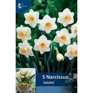 Narcis Salomé