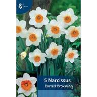 Narcis Barrett Browning