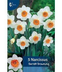 Narcissus Barrett Browning