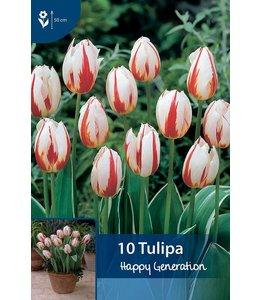 Tulpen Happy Geration