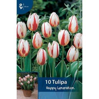 Tulpen Happy Generation