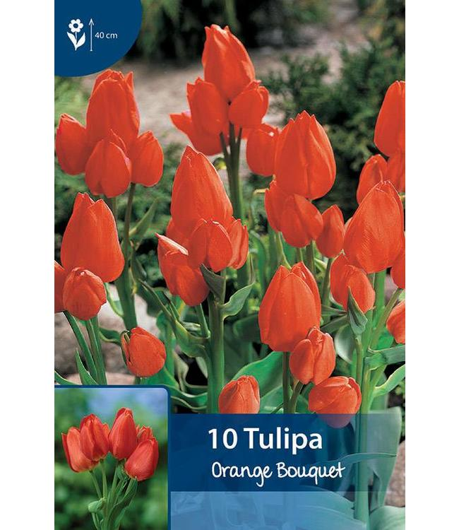 Tulp Orange Bouquet