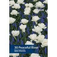 Peaceful River Mengsel