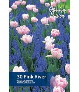 Pink River Mixture