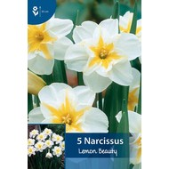 Narcis Lemon Beauty