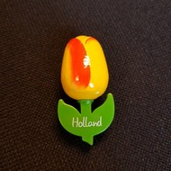 Tulip Magnet Yellow / Orange