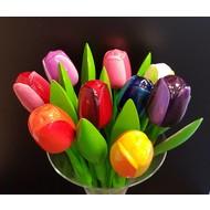 Tulip Bouquet (Large) in bag