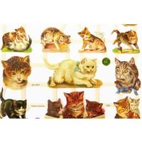 Vintage-Glanzbilder Katzen