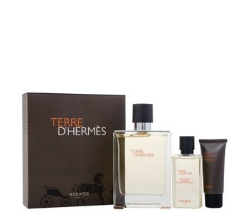 Hermes Giftset Terre D'Hermes EDT 100ml + SHOWER GEL 40ml + Aftershave Balm 15ml Toilette