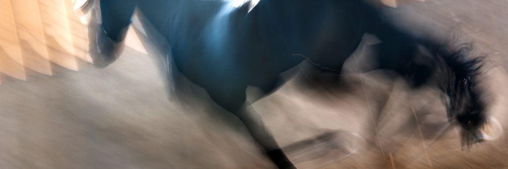 Akustikbild inkl. Motiv Run16