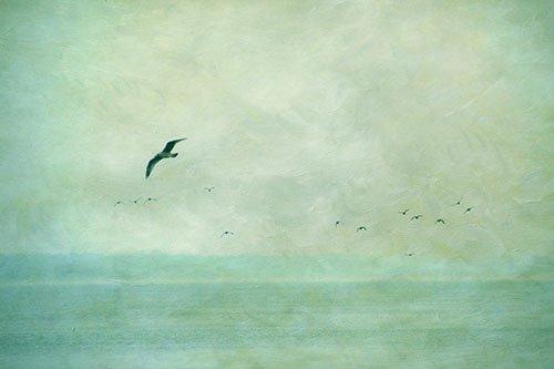 Akustikbild inkl. Motiv Ocean