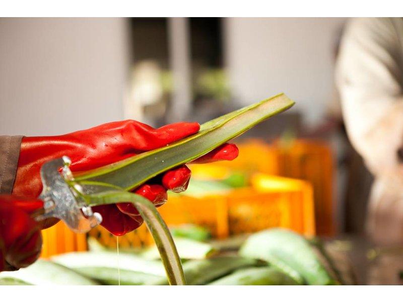 Pure Juice – 100% čerstvě lisovaný džus Aloe Vera