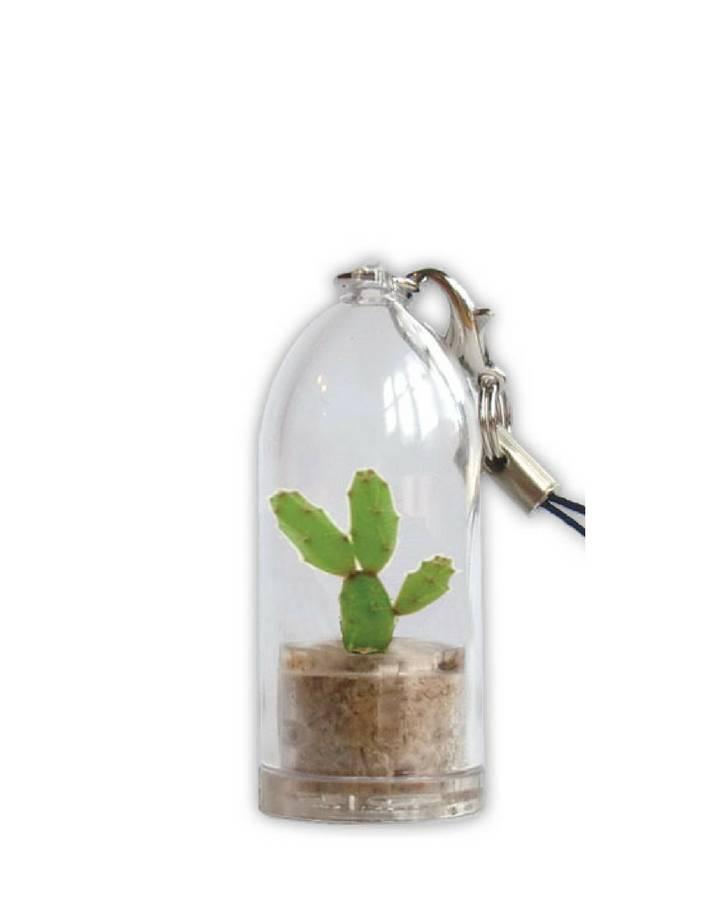 Feel Green Plantochi