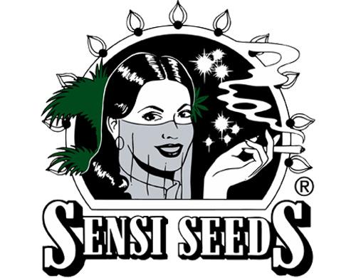 Sensi Seed