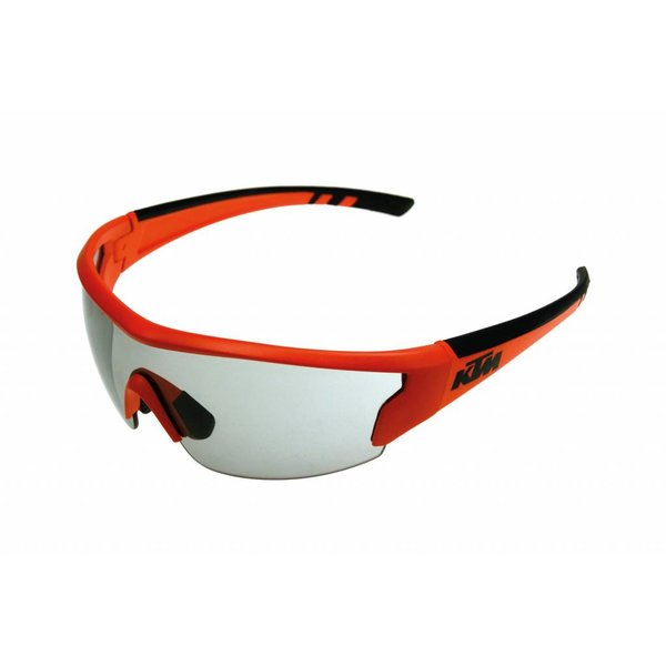 Factory Team Goggles