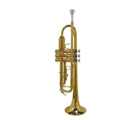 Stewart Ellis SE-1800-L | Stewart Ellis Pro Series trompet