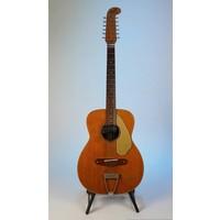 Fender Fender Villager 12-snarig