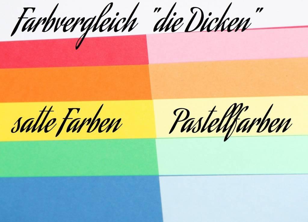 """""""die Dicken"""" by Datamondial UG """"die Dicken"""" Moderationskarten Rechtecke 10x20cm, 100 Stück, Farben pastell & intensiv"""