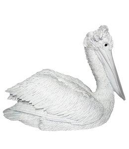 Klipper The Pelican