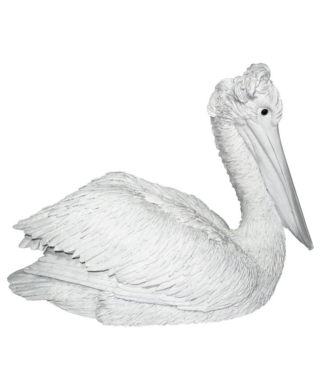 Klipper The Pelican