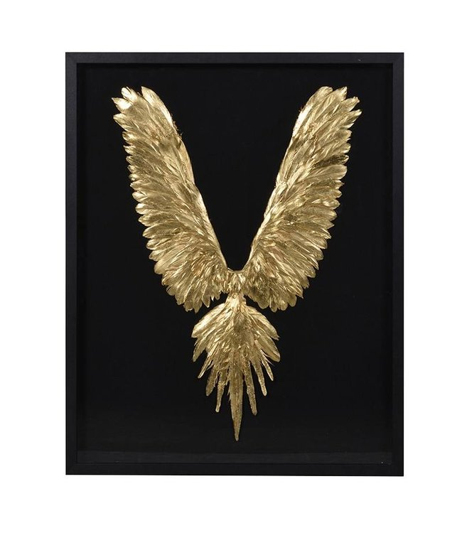 Gold Feathers in a Black Frame