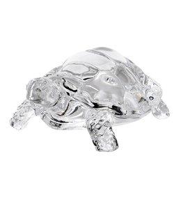 Glass Turtle