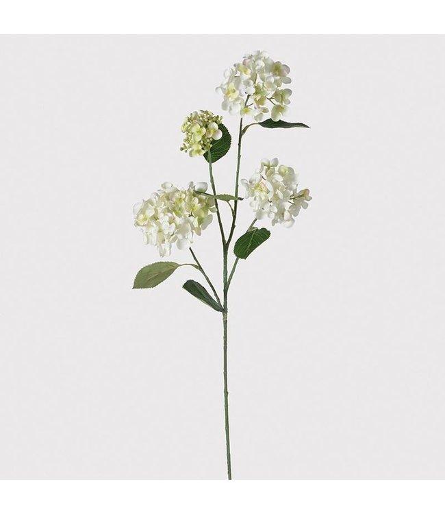 White and Green Hydrangea Spray
